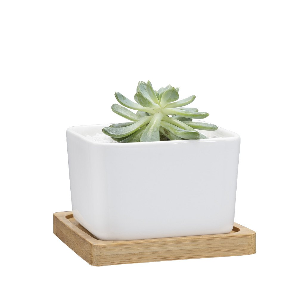 Mkono Succulent Plant Pot Ceramic Planter with Bamboo Tray, White, Square