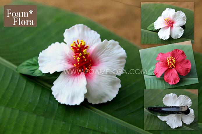 Unduh 770 Koleksi Gambar Bunga Kembang Sepatu Hitam Putih Gratis Terbaru