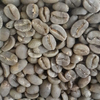Specialty Arabica Green Bean Luwak Coffee from Indonesia