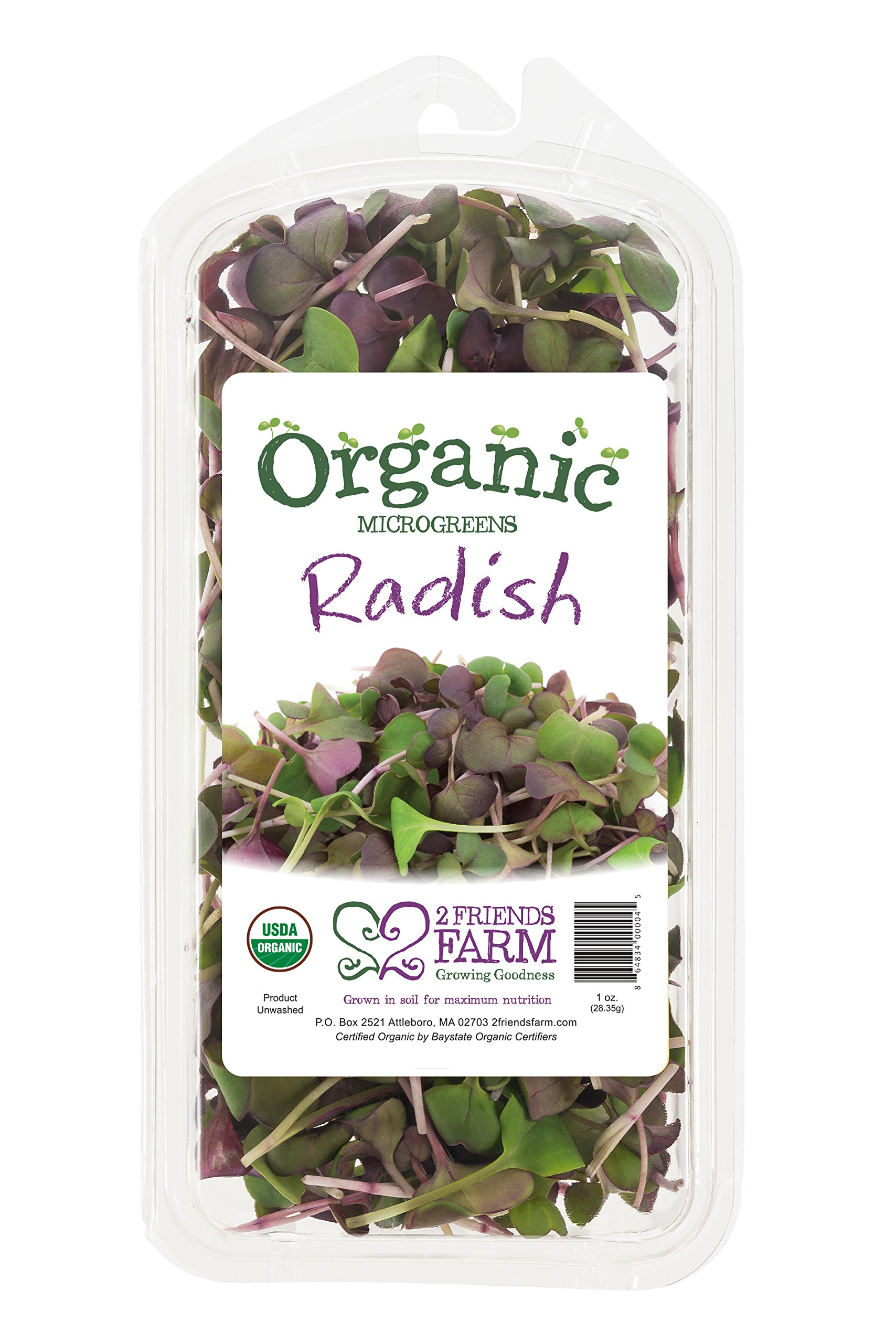 2 Friends Farm Local Northeast Organic Purple Radish Microgreens 1oz