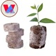 CHEAP COCOPEAT PELLETS WITH CHEAP PRICE (Ben +84 365 777 588)