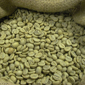 Best Quality Green Coffee Beans Buy Ethiopian Coffee Beans