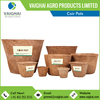 /product-detail/smooth-finish-light-weight-coir-pots-coir-flower-pots-available-in-different-sizes-50037043223.html