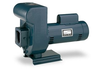 Pentair DHHG-53L Single-Phase High Head Self Priming Centrifugal Pool and Spa Pump, 230-Volt, 2-1/2 HP