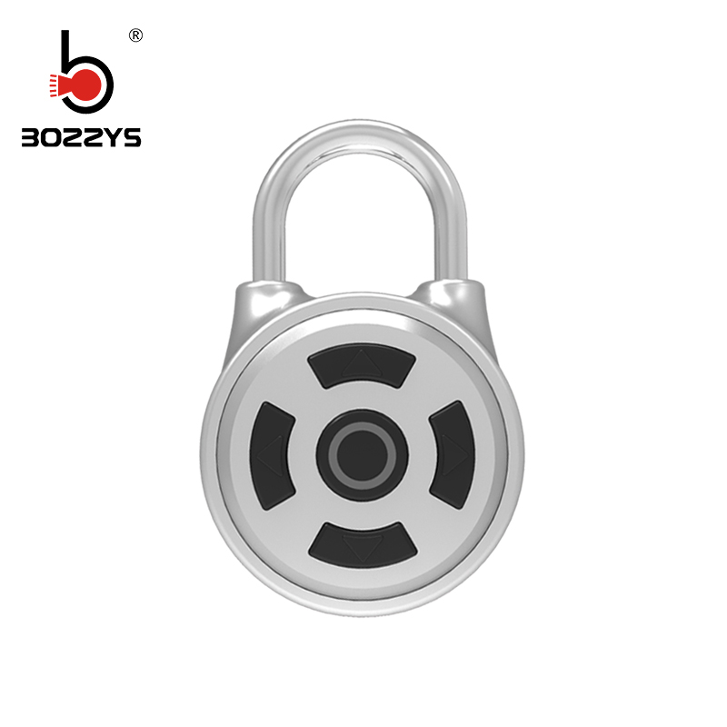 BOZZYS Hot sales Keyless Bluetooth Deur Smart lock M1