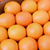 8 kg carton Egypt fresh oranges, Fresh Juicy Oranges Egyptian Valencia Navel Orange