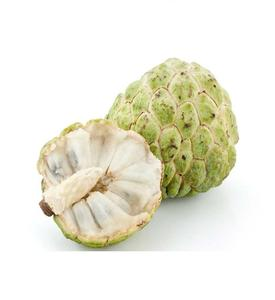 BULK FRESH CUSTARD APPLE IN BEST QUALITY - Whatsapp +84938880463