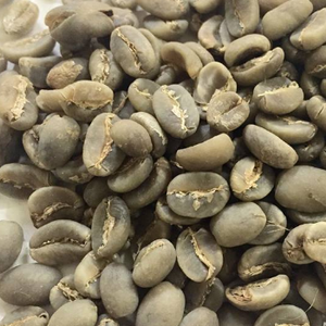QUALITY GREEN ROBUSTA COFFEE BEANS