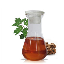 Angelica Root Oil | 100% Natural and Pure Angelica Root Oil | Angelica Root Essential Oil / Angelica Archangelica Root Essential