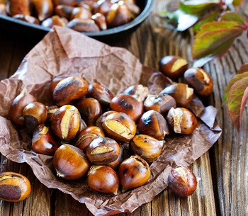 Fresh Chestnuts / Raw Chestnuts / Dried Chestnut