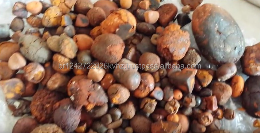 Best quality gallstones from Ox available for sale