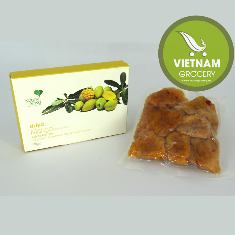 Natural Delicious Vietnamese Dried Mango 100Gr