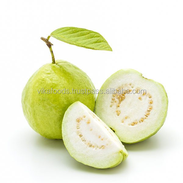FRESH GUAVA HIGH QUALITY WITH BEST PRICE FOR YOU