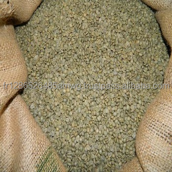 supplier arabica and robusta green coffee beans | VIETNAM BEST PRICE 2016