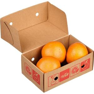 Freshly Picked Navel Orange for sale South Africa