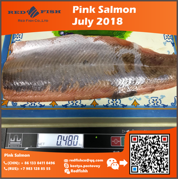Sea Food Chum Salmon Portion Frozen Salmon by Red Fish