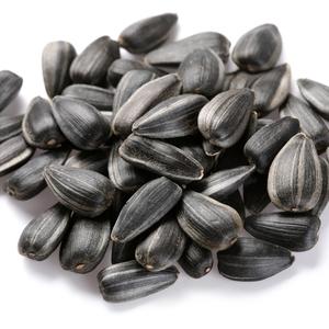 High quality kernels bean sunflower seeds