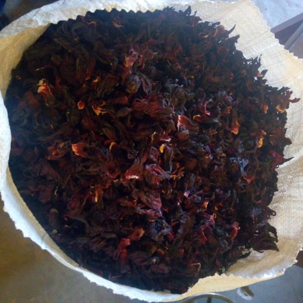 Dried hibiscus flowernigeria buy dried hibiscus flower nigeria dried hibiscus flowernigeria buy dried hibiscus flower nigerianigeria hibiscus sabdariffadried roselle product on alibaba izmirmasajfo