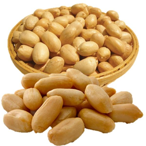 Premium Grade and Vacuum Bag Packaging BLANCHED PEANUTS / Roasted and salted peanut