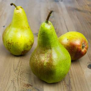 Quality Fresh Sweet Pears on 30% Discount Sale Ready for Export