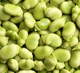 Quality green broad beans