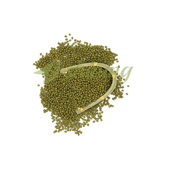 Wholesale Chinese Bulk Artificial Dried Mung Green Beans