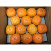Japanese Sweet Fresh Persimmon Fruits for Sale with Good Price