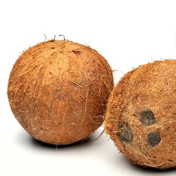 Matured Fresh Brown Semi Husked Coconuts....