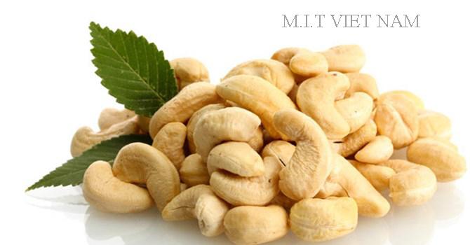 WHITE CASHEW NUTS NO.1 VIET NAM - BEST QUALITY