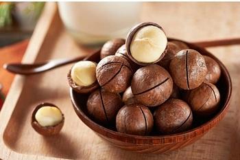 alimento-proibido-nozes-de-macadamia