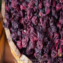 Dried Hibiscus Rosa Sinensis Flowers Suppliers From India.