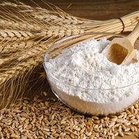 Certified High Quality Wheat Flour for Bread Noodle Flour Bread Flour