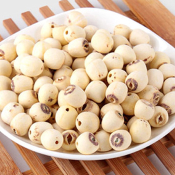 Dry Lotus Seed Top Quality Lotus Flower Seed From Vietnam Buy
