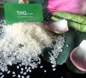 Absolute Quality CALROSE RICE /JAPONICA RICE / ROUND RICE From THQ Viet Nam - Rose Do: 0084 977 610 525