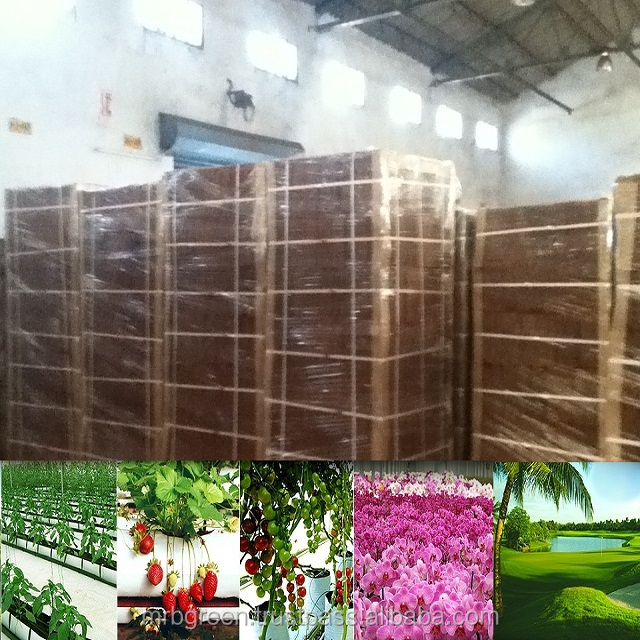 best quality coco peat from India