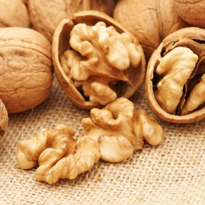 Грецкий орех красивые картинки