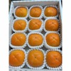 Japan sweet fresh persimmon fruits at good price for sale
