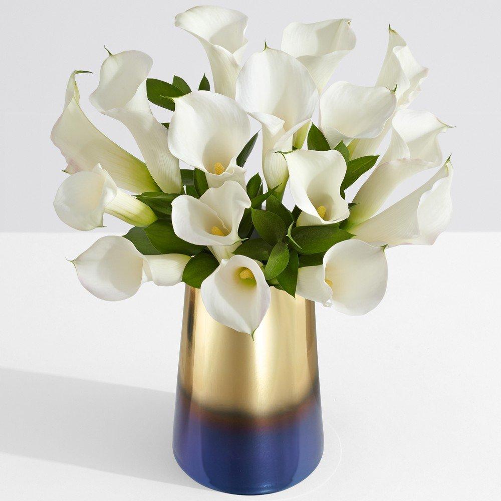 Cheap Mini White Calla Lilies Find Mini White Calla Lilies Deals On