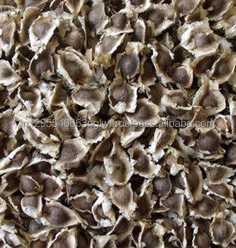 Moringa Seeds - Buy Pkm1 Moringa Seeds,Bulk Moringa Seeds,Moringa Oleifera  Seeds Product on Alibaba com