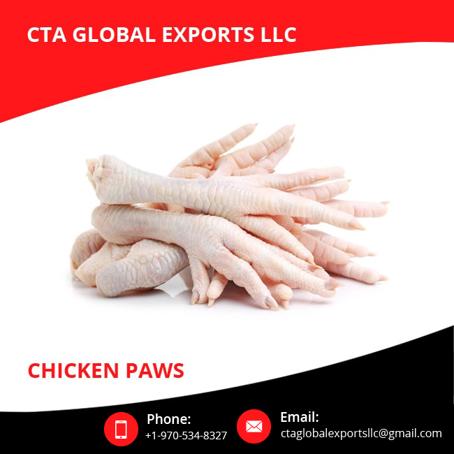 Halal Fresh Good Quality Frozen Chicken Paws for Bulk Purchase