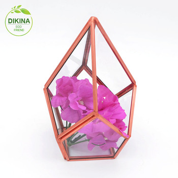 //Put inside you treasures or use it for your plants//China Geometric Mini House Glass Cube Terrarium