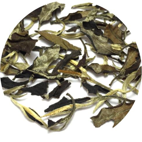 2018 Organic Best White Tea Price Silver Needle White Tea lowest price - 4uTea | 4uTea.com