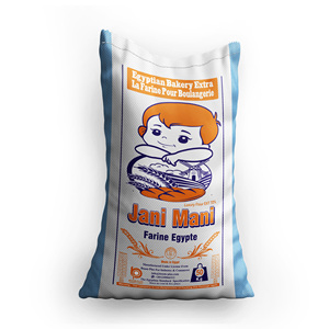 Bulk 50kg Wheat Flour for Bread