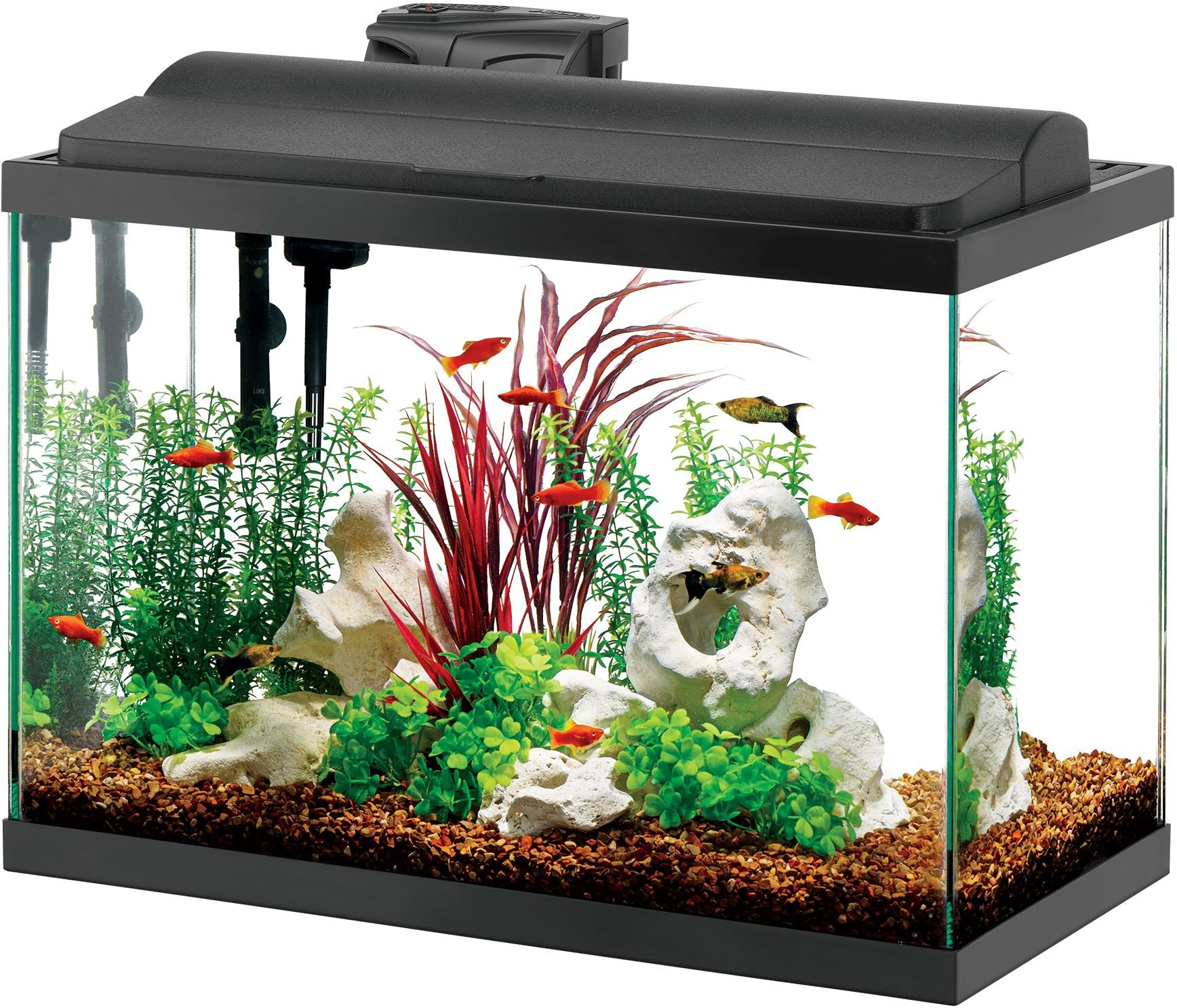 Cheap Aqueon Aquarium Light, find Aqueon Aquarium Light