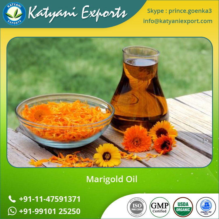 New and Fresh Marigold Oil at Low Export Price