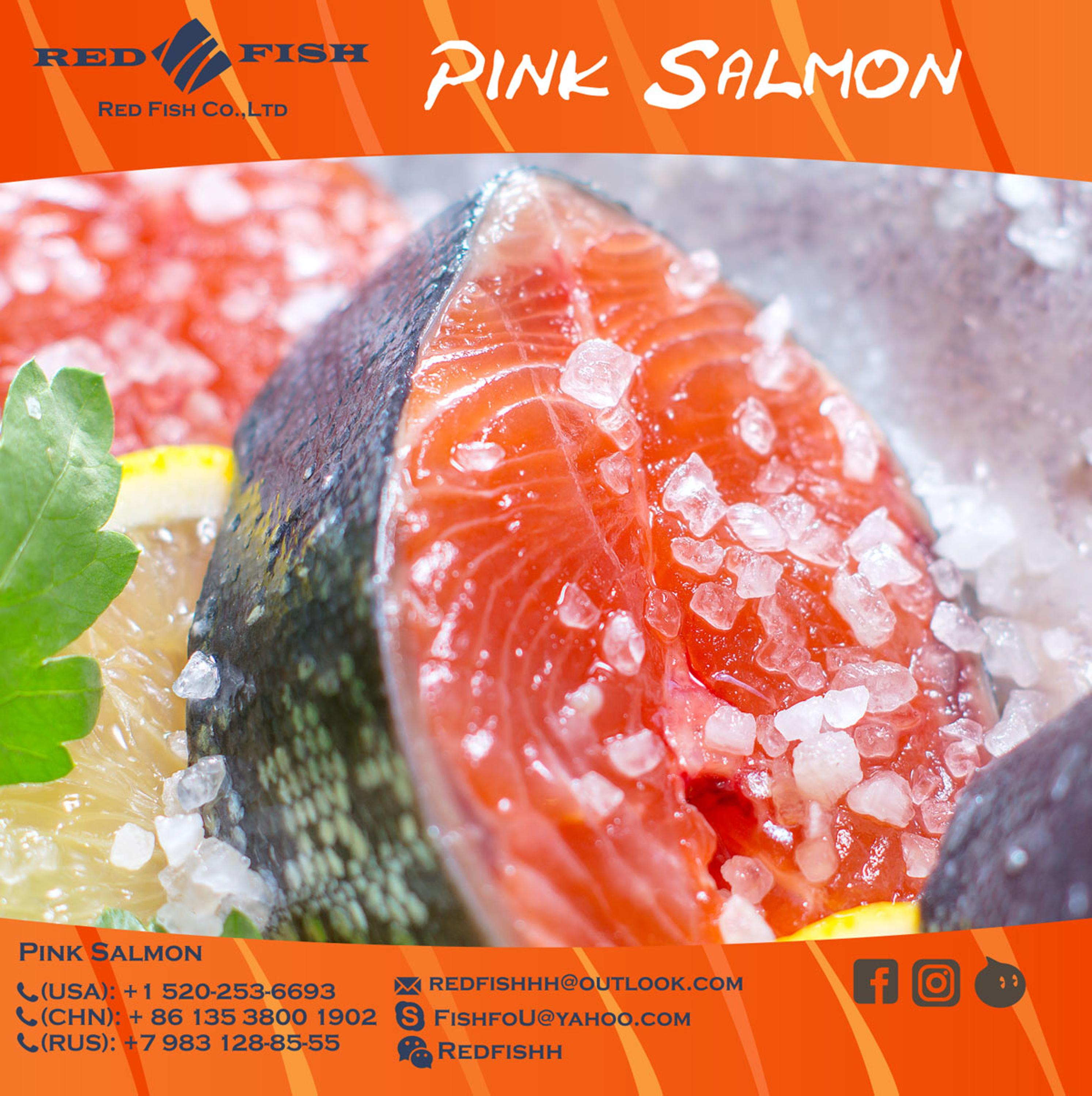 Natural Frozen Pink Salmon