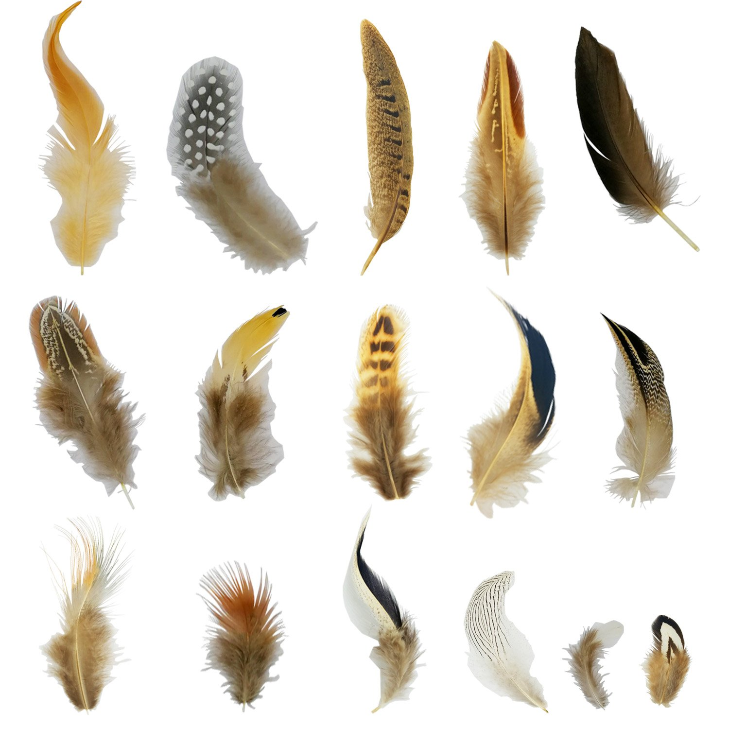 16 kinds of Art feathers Assorted for DIY Dream Catcher Craft (45pcs -50pcs)