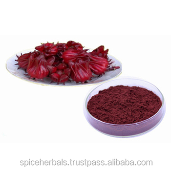 Hibiscus Flower Powder Pure And Natural Buy Hibiscus Flower