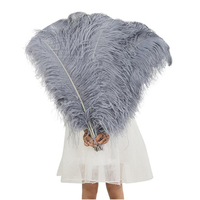 Many colors many size cheap ostrich feathers