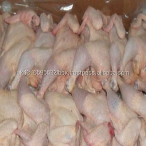 Grade A frozen chicken paws/Feet processed Brazil origin for sale